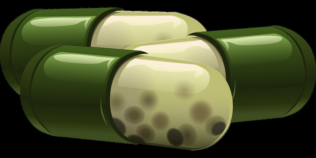 Wurmtherapie - Parasitismus gegen Allergie