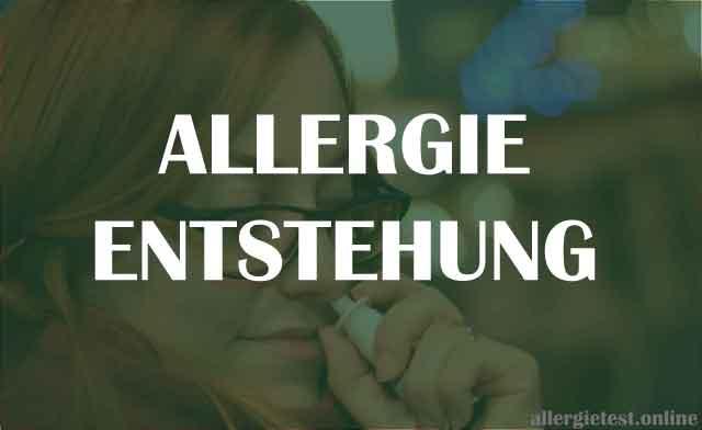 Allergieentstehung