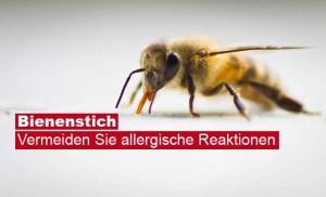 Wie behandelt man einen Bienenstich.
