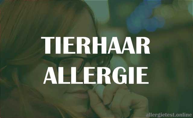 Tierhaarallergie - Symptome, Diagnose & Behandlung